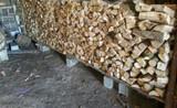 LeÑa de carballo en ourense - foto