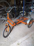 triciclo adulto 180 - foto