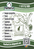 Diseñador Gráfico - foto