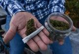 busco  marihuana hachís hash bho drift - foto
