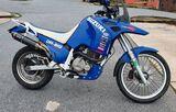 SUZUKI - DR BIG 750 - foto