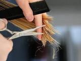 peluquera a domicilio - foto