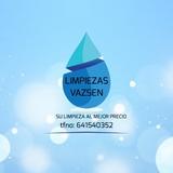 limpiezas vazsen - foto