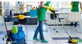 limpiezas basicas y integrales - foto