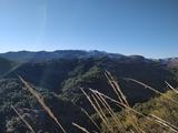 se ofrece guía de montaña para caza - foto