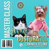 COSTURA CANINA Y FELINA - foto