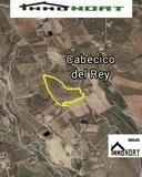 CABECICO DEL REY - foto