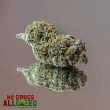 Flores de cannabis canabidiol cogollos - foto