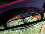 remolques para bici - foto