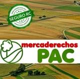 LOTE DE DERECHOS PAGO BÁSICO REGIÓN  6. 1 - foto
