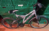 bicicletas EXS 2500 - foto