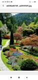 decoradores de jardines - foto