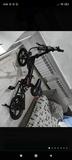 bici eléctrica ess watt - foto