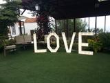 Alquiler de letras LOVE - foto