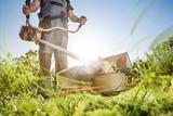 Cortamos hierba y maleza de fincas - foto