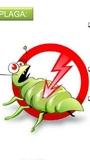 fumigación de cucarachas - foto