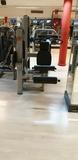 Extensión de cuádriceps Techno Gym - foto