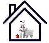 Dentista a domicilio (urgencias) - foto