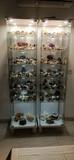 Colección y vitrinas. - foto