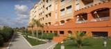 ALQUILER LAS ARENAS 1092 ISLA CANELA - foto