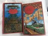 2 LIBROS DE JULES VERNE - foto