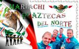 Mariachis en las palmas - foto