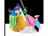 Servicio  limpieza y manteniendo - foto