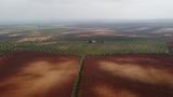 Trabajos aÉreos con dron profesional - foto