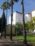VENDO PISO EN TORRESBLANCAS - foto