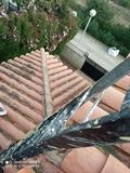 tejados Roberto - foto