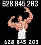 suplementos musculación gym - foto