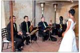 Músicos para su fiesta (violinistas,etc) - foto