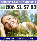 TAROT Y VIDENCIA en Alicante - foto