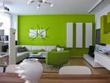 Pintor casas profesional econÓmico - foto