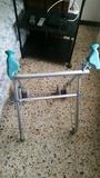 andador ortopedico - foto