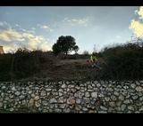 JARDINERO,  DESBROCE PARCELAS,  FINCAS - foto