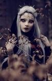 Brujeria amarres de amor y pasión - foto
