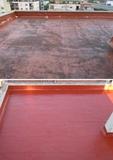 reparación y pintado de azoteas - foto