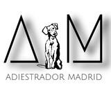EDUCADOR CANINO MADRID.  - foto