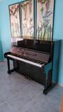 CLASE PARTICULARES DE PIANO EN MOLINA - foto