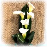 EnvÍa flores a domicilio gratis - foto