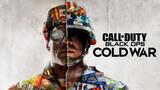 Call of Duty: Cold War Key para PC - foto