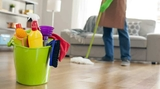 Profesional limpieza 4,50/hora - foto