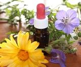 Consult naturopatia/homeopatia/flor bach - foto
