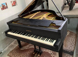 PIANO DE COLA GEORGE STECK & CO