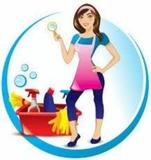 Limpiadora del hogar - foto
