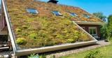 Cubiertas verdes para tu hogar - foto