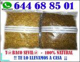 LA CHANCLA-TABAC$48H ENVIO-CONTRAREMBOLS - foto