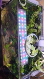 PANTALLA LED TWINSTAR 600EA - foto
