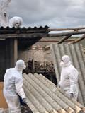 Elimina el amianto,empresa homologada - foto